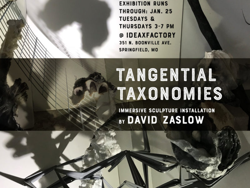 Tangential Taxonomies First Friday Reception on Jan. 4